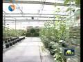 转变发展方式 提升农业现代化水平
