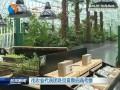 市农业代表团赴京冀鲁招商考察