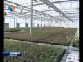 我市设施农业发展质效双提升
