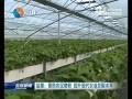 盐都:聚焦农民增收 提升现代农业发展水平