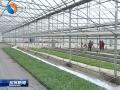 """阜宁:农业发展""""换挡""""提速激活力"""
