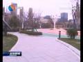 """市人大调研城南新区""""一片林""""建设"""