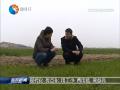 【春耕垄上行】(四):家庭农场让农业更高效
