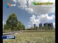 【奏响绿色发展最强音】(2)我市绿色发展获生态红利