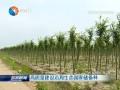 高质量建设沿海生态国家储备林