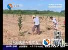 培植传统经济特色 发展绿色富民新业态