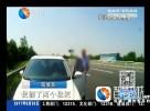 """车停高速为摘枇杷  贿赂民警求 """"通融"""""""