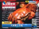 大闸蟹已经上市  2两5母蟹15元一只