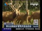 野生动物保护宣传月活动启动