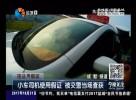 小车司机使用假证  被交警当场查获
