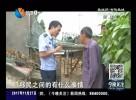 康立峰——三峡移民知心人  打击破案急先锋