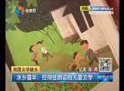 水乡童年:经得住朗读的儿童文学