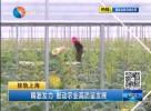 东台:精准发力 推动农业高质量发展
