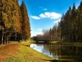 """""""黄海森林""""中美田园诗会丨我带上你,你带上诗歌,来一场田园诗会里的时光之旅"""