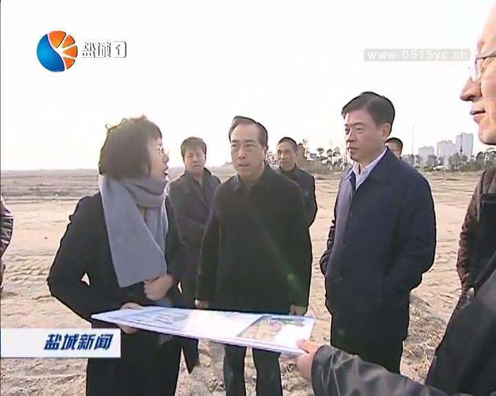 """王荣平到城南新区调研时强调 加快建设南海未来城 全面实施""""三治三化""""专项行动"""