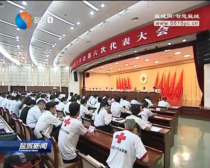 盐城市红十字会第六次代表大会召开 戴源徐国林讲话