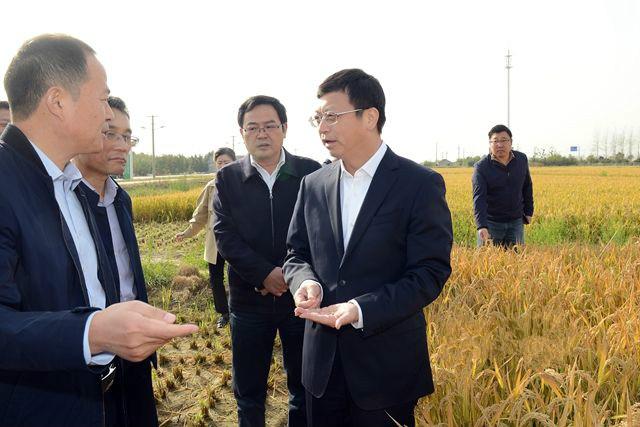 以科技創新助推農業農村高質量發展 曹路寶率隊調研農業科技服務工作