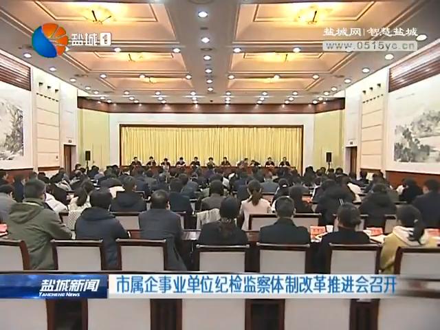 市屬企事業單位紀檢監察體制改革推進會召開