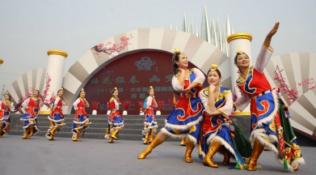 2017中国·大丰第二届梅花节开幕 3000亩地上赏梅听戏猜灯谜