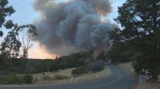 澳大利亚南部山火肆虐 多地居民被迫撤离