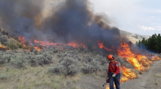 多國科學家:加拿大未來或因山火控制不力遭受嚴重損失