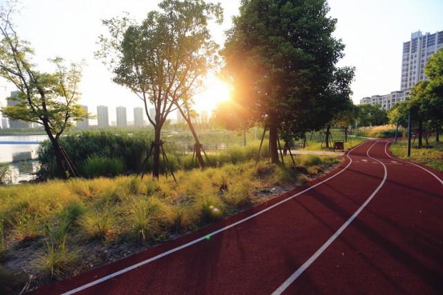 市区年内建成131公里健身步道 你还有什么理由不运动?