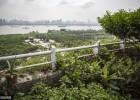 武汉老人十年完成私人空中花园 可见江景