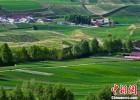 阿鲁科尔沁草原上的游牧迁徙