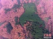 大自然的调色板!航拍重庆喀斯特国家公园
