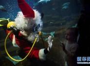 """圣诞预热 巴黎水族馆""""圣诞老人""""喂鱼"""