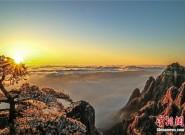 壮美如画!黄山云海、日出、雾凇多景齐现