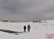 祁连山冬夏交织 山上白雪皑皑山下绿草如茵