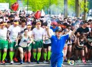 圖集 | 助力申遺 奔跑東臺——2019黃海森林半程馬拉松