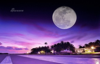 守住我们的祖宗海!镜头下的中国南海到底多美