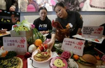 善待动物组织为鸡举办午宴 宣传素食主义