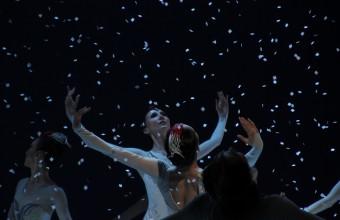 国家艺术基金2018年度资助项目 中国盐城丹顶鹤国际生态旅游节暨第十一届海盐文化节专场演出芭蕾舞剧《鹤魂》!
