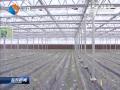 农业科技装备水平实现新突破