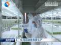 【春耕垄上行】(八):工厂化育苗助推春耕生产