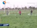 发展现代农业促民增收