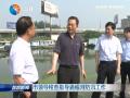 市领导检查指导通榆河防汛工作