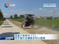 【高温下的坚守】(5)用辛勤汗水铺就农村小康路