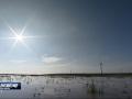 全国人大环资委来盐调研海洋环保工作