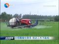 水稻穗期虫害多 防治工作不能松