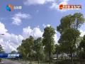 【人民与权力】打造江苏沿海开放高地 推动高质量发展走在苏北苏中前列