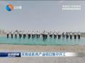 滨海县医药产业项目集中开工
