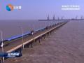 """【聚焦""""两海两绿""""】(2):全面接轨上海 提升城市能级"""