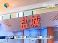 """""""盐城元素""""精彩绽放首届长三角文博会"""