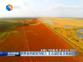 鹤舞鹿鸣展独特魅力  生态湿地显发展新优势