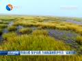 """尊重自然 保护自然  为国际湿地保护作出""""盐城贡献"""""""