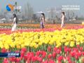 """搭乘""""上海风""""促进旅游高质量发展"""